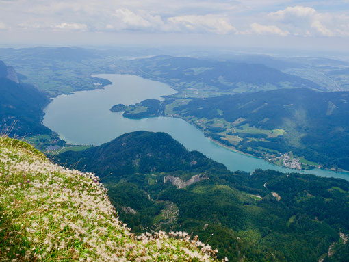 Mondsee Salzkammergut Österreich