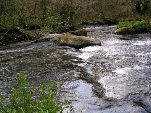 Rivière de l'Odet