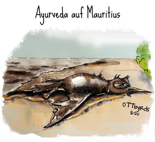 mauritius, ayurveda, öltanker, ayurvda, ölkatastrophe, leck, wakashio, umweltzerstörung, naturschutzgebiet, insel der silberreiher, ölmassage, ottbyrds