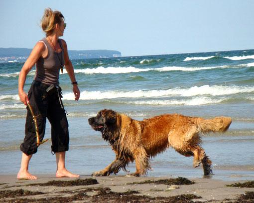 Hund Cimba und Frauchen in den glücklichsten Momenten