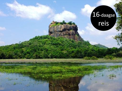 Uitzicht op de bekende Lion Rock Sri Lanka