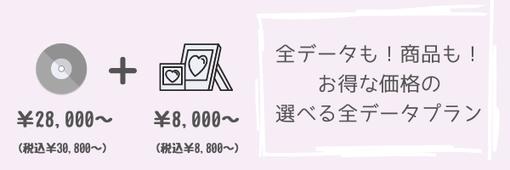 今だけ!全データプラン28,000円