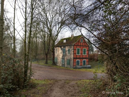 Das Rote Haus (Atelierhaus der Künstlerkolonie) in Solingen, Zustand im Januar 2021