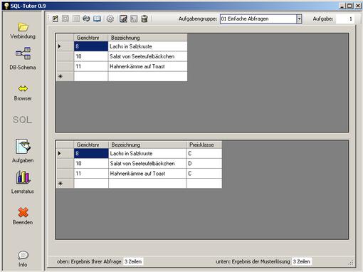Der Benutzer vergleicht das Ergebnis seiner Lösung mit dem der Musterlösung