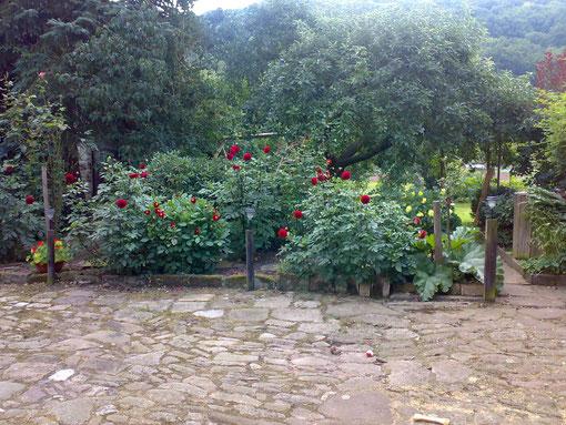 Blick vom Hof auf einen Teil des Gartens
