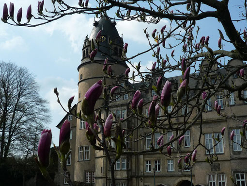 Frühling im Schlosspark Detmold, Foto: Heiko Böddeker Lippe Tourismus & Marketing AG