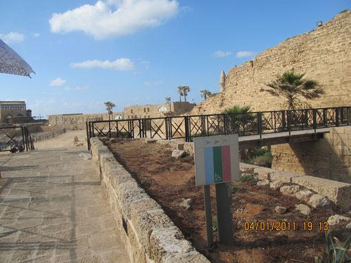 средневековая крепостная стена и ров