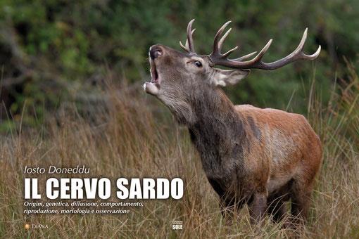 Il Cervo Sardo