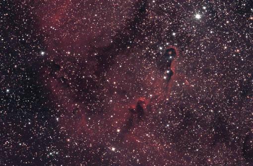 IC 1396 mit EOS 1100 und FFC 3.5/500 aufgenommen