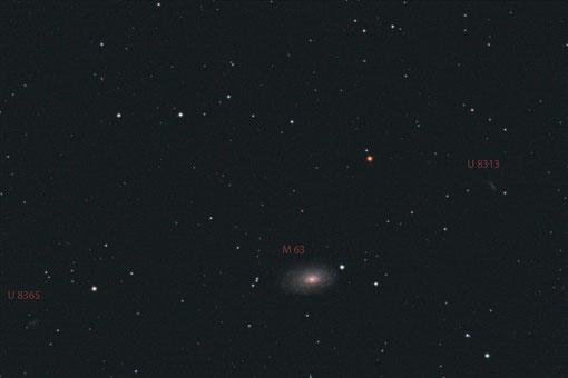 Sonnenblumengalaxie M63 mit 1000 mm Aufnahmebrennweite