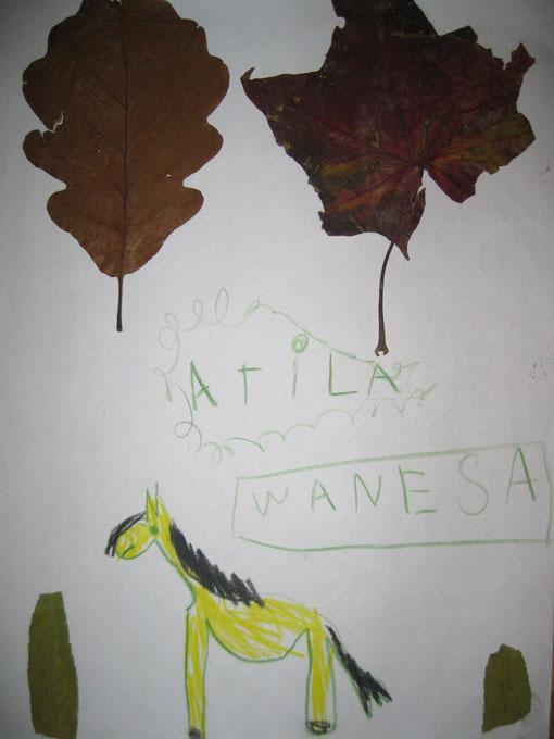 Lara 16.11.2012