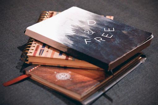 Ein Buch schreiben, Recherche, Reisetagebuch