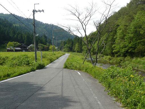 小屋の前の道 6月
