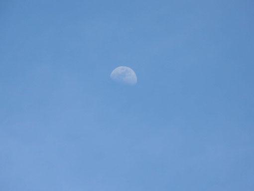 バニラアイスの月