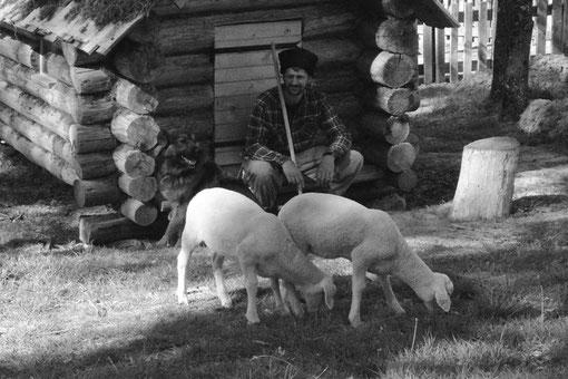 ferme bashkir cosaque john c autonomie cheptel mouton tradition