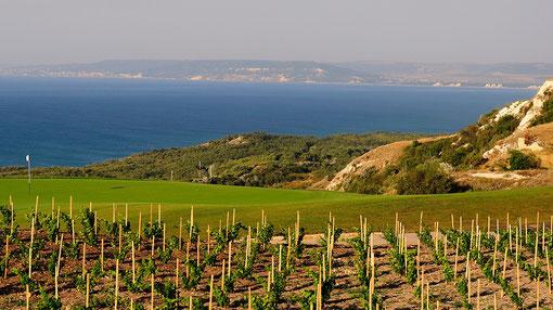 Immobilien Bulgarien Schwarzes Meer