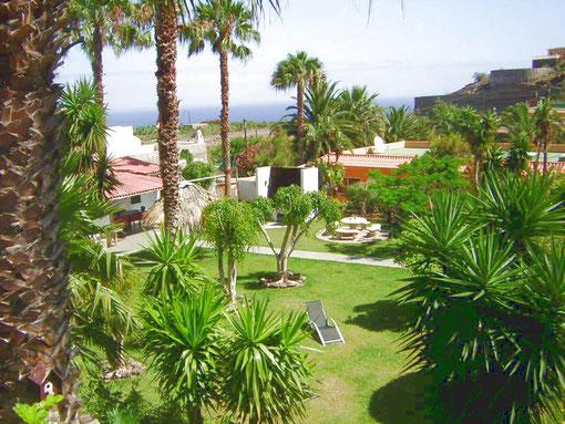 Blick durch Palmen in den Garten von der Finca in Buen Paso, mit 5 Ferienbungalows