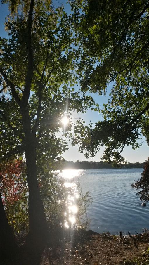 Blick auf den Unterbacher See