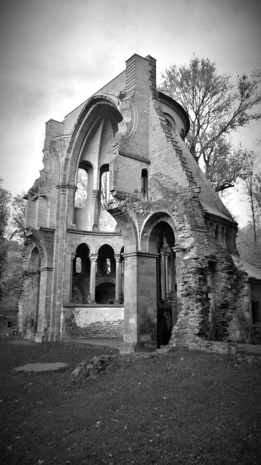 Meine romantisch-historische Aufnahme der Klosterruine vom November 2018