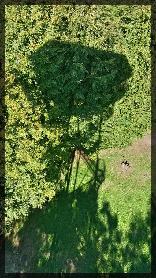 Schattenspiel vom Johannesturm aus gesehen