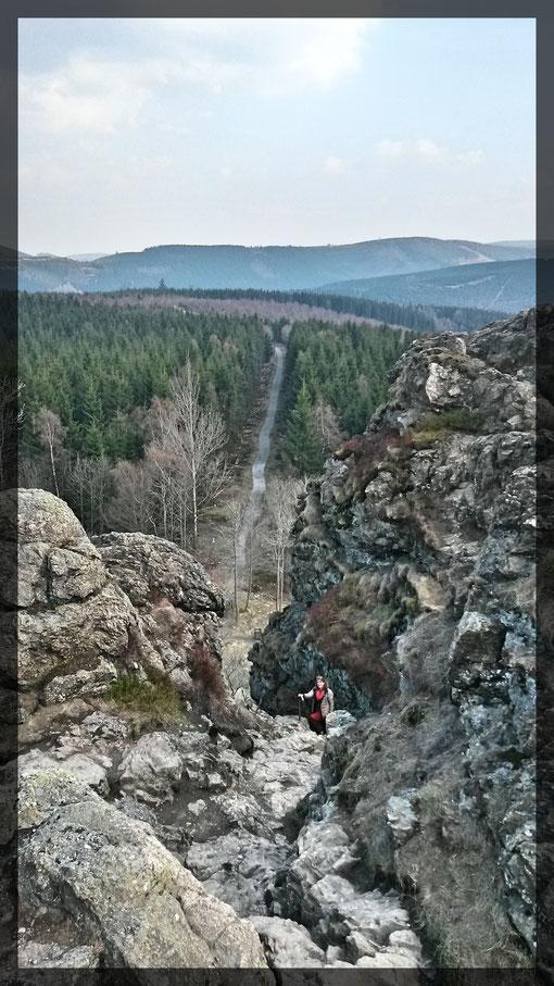 Felsenkraxelei zum Gipfel der Bruchhauser Steine, ein Riesenabenteuer für die Kinder