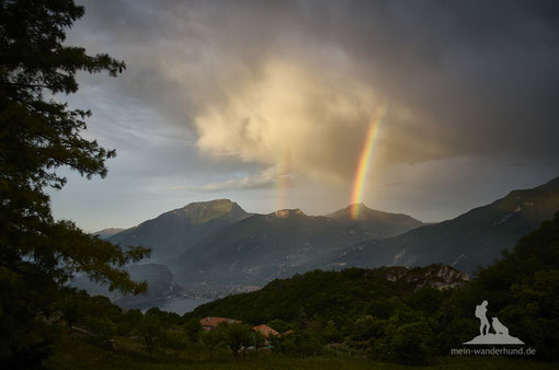 Wandern mit Hund, mein Wanderhund Ari, Andrea Obele, Gardasee, Cima della Nara;