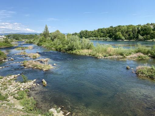Wasser ist eigentlich immer schön - auch in Deutschland wie hier am Rhein