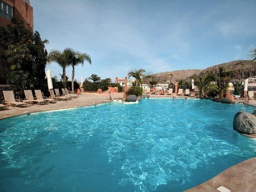 Blau schimmernder Pool von der Gemeinschaftsanlage mit Sonnenliegen  und einer Einrahmung aus Palmen