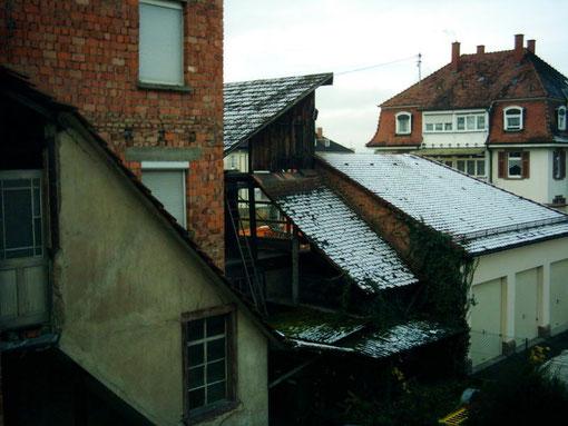(C) by Dieter 15.11.2007 (und der 1te Schnee in Emmendingen)