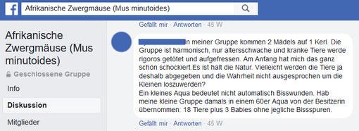Kommentar in einer Facebook-Gruppe
