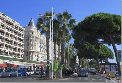 Fahrt durch Cannes