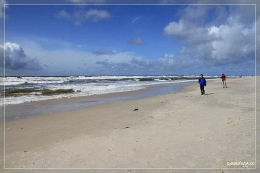 Ein stürmischer Tag am Meer...