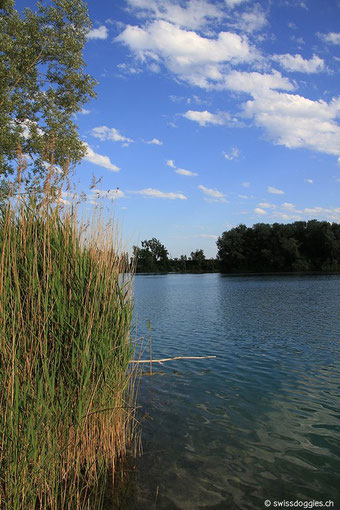 Ruhe pur auf dieser Seite des Sees