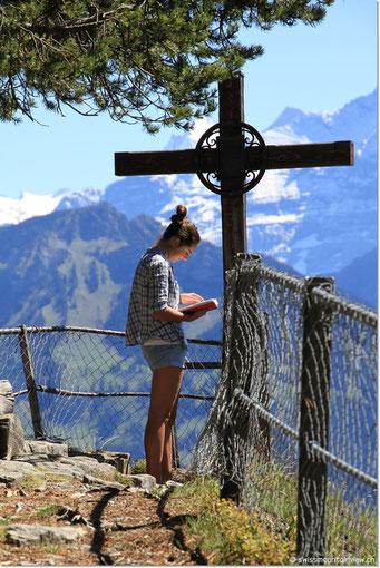 Nathi studiert das Gipfelbuch...