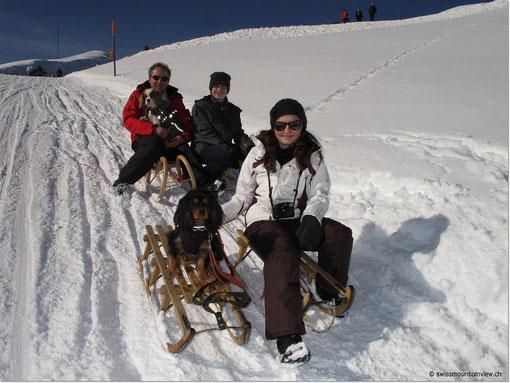 Wir sind startklar; in steileren Partien nehmen wir die Doggies auf den Schoss, bei flacheren Stellen rennen sie neben dem Schlitten.