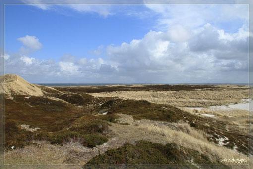 Beeindruckende Landschaft...