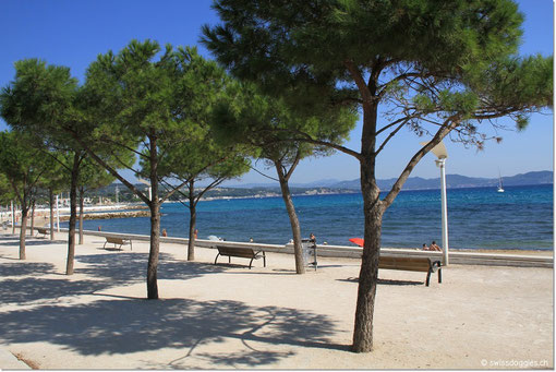 Strandpromenade von La Ciotat