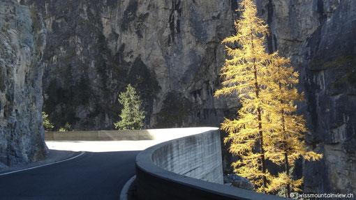 Fahrt Richtung Bergün
