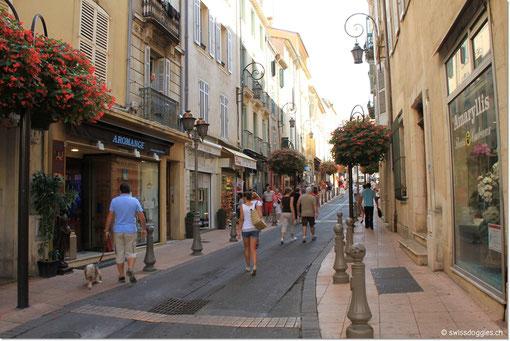 und durch die Gässchen der Altstadt.