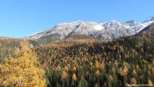 von wo wir via Flüelapass - Davos - Klosters - Landquart
