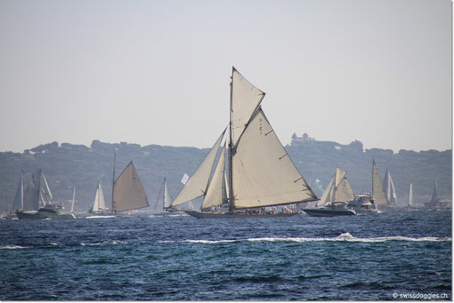 Bei Sainte-Maxime erhaschen wir einen Blick auf den mit Segelbooten bespickten Golf von Saint-Tropez.