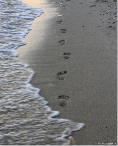 Kaum getreten - auch schon wieder vom Meer verschluckt.