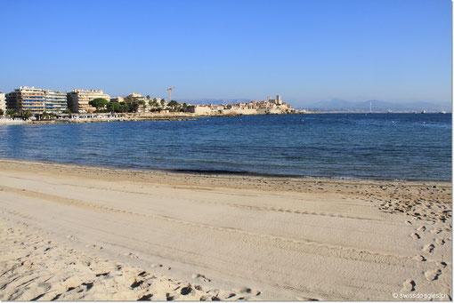 Der Strand von Antibes - am Montagmorgen - am Sonntag war er vollbepackt mit Sonnenhungrigen... und das anfangs Oktober.