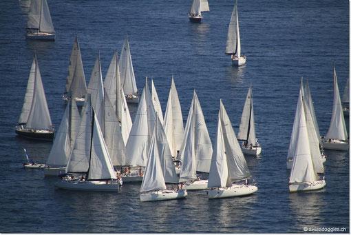 """Vor Cannes gibt es wieder so eine """"Segelboot""""-Versammlung ;)"""