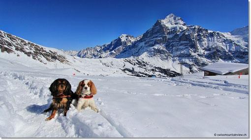 im Schnee und an der Sonne :)