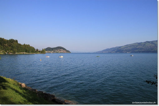 Morgen am Thunersee