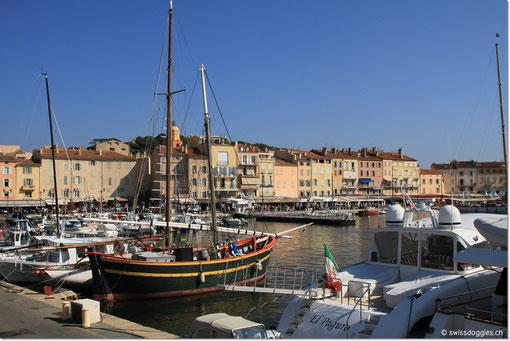 Am Mittag sind wir in St. Tropez und flanieren nach einem feinen Mittagessen