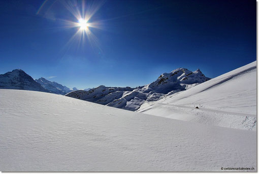 frisch verschneite Landschaft.