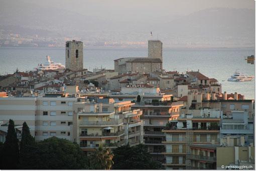 Blick auf die Altstadt von Antibes.