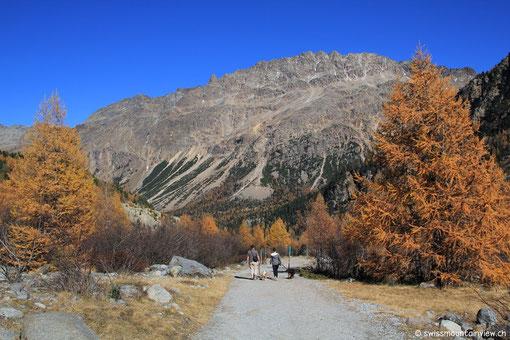 Auf dem Rückweg geniessen wir nochmals die herrliche Berglandschaft...